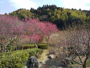 takahashi_210222_2.jpg