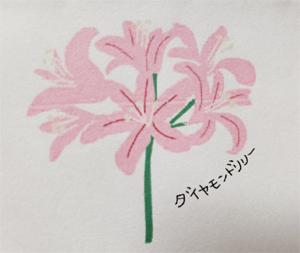 aoki_201013_3