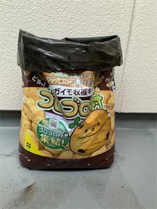fujisawa_200309_1