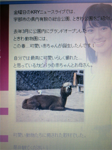 narita_170321_1