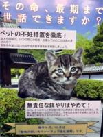 suizu_170104_3