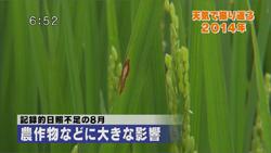 yamamoto_141226_6