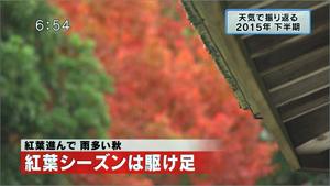 yamamoto_151225_11
